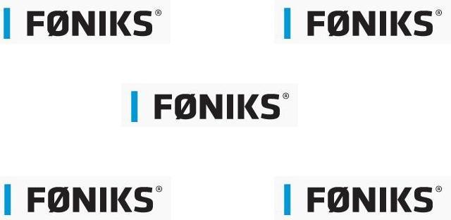 Fniks computer